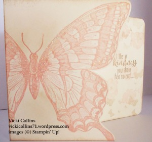 Large Butterfly Card 1